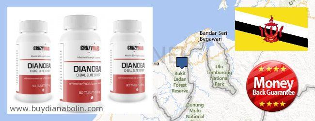Где купить Dianabol онлайн Brunei